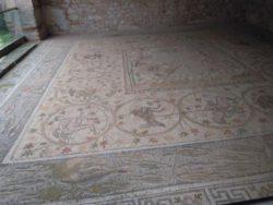 ψηφιδωτό αρχαία Νικόπολη